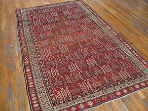 Antique Caucasian - Shirvan Rug - 21571 | Caucasian 5' 10'' x 9' 10'' | Red, Origin Caucasus, Circa: 1900